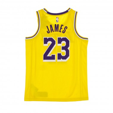 CANOTTA BASKET NBA SWINGMAN JERSEY ICON EDITION 2020 N 23 LEBRON JAMES LOSLAK