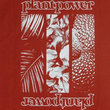 MAGLIETTA PLANT POWER