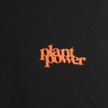 FELPA GIROCOLLO PLANT POWER