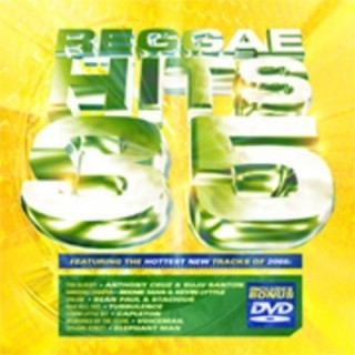 CD AAVV - REGGAE HITS VOL 35
