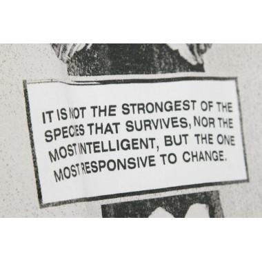 MAGLIETTA RESPONSIVE TO CHANGE