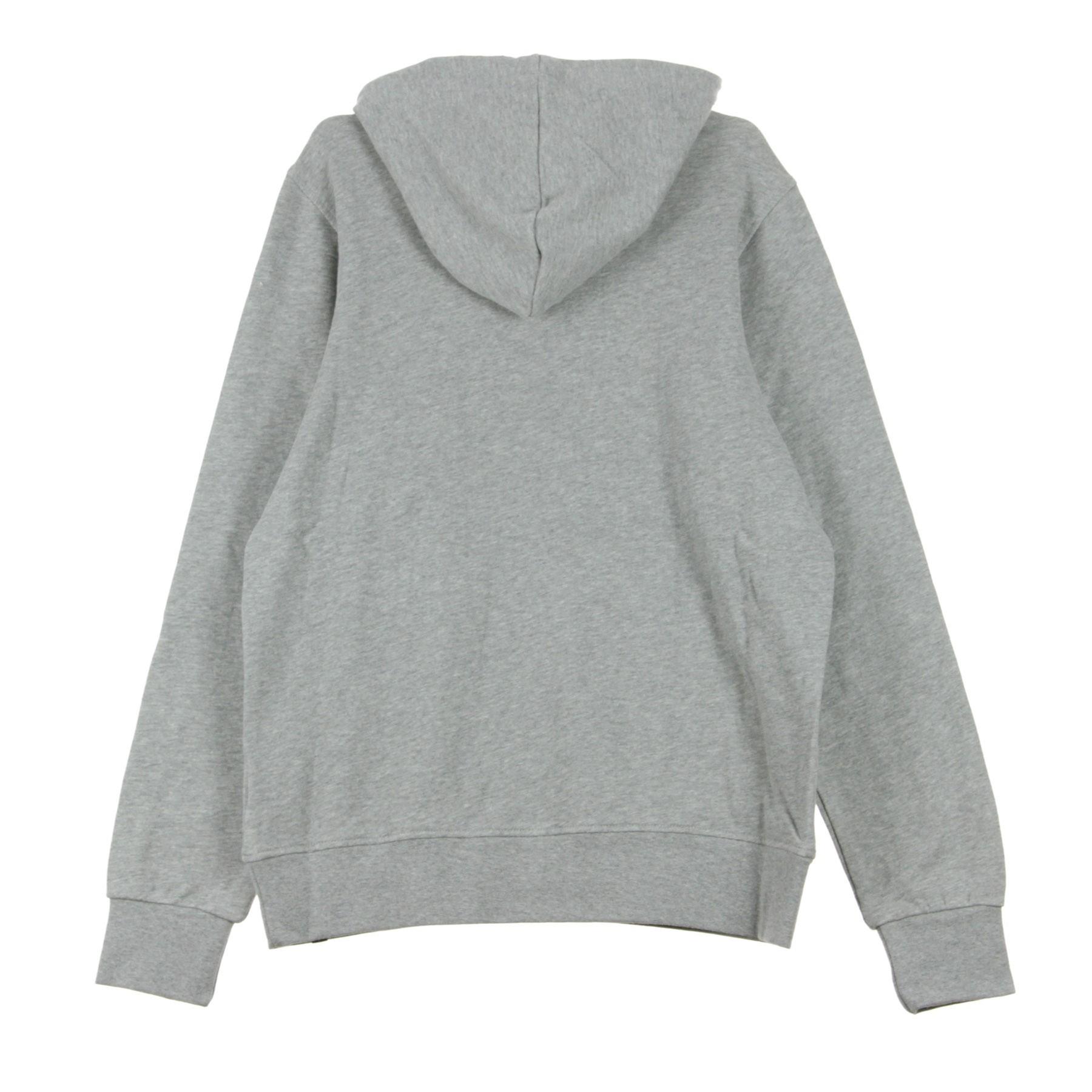 GLIMPSE ICON Felpa con cappuccio grey heather